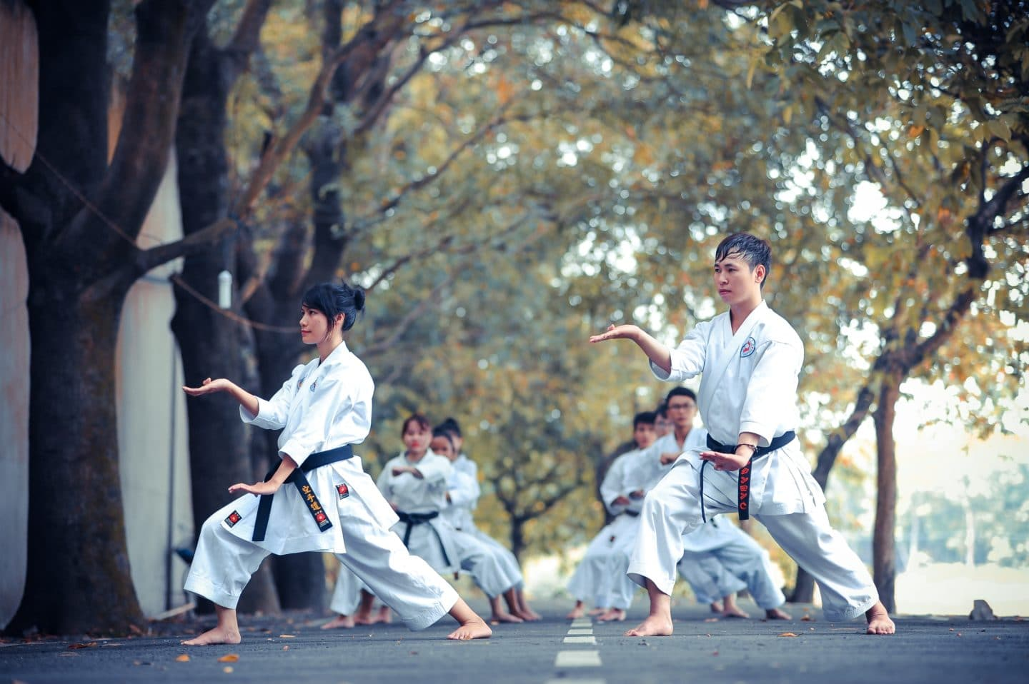Health benefits of international martial arts forms [Infographic]